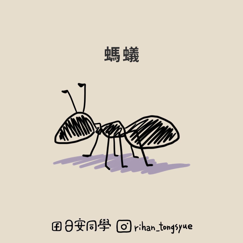 螞蟻_首頁
